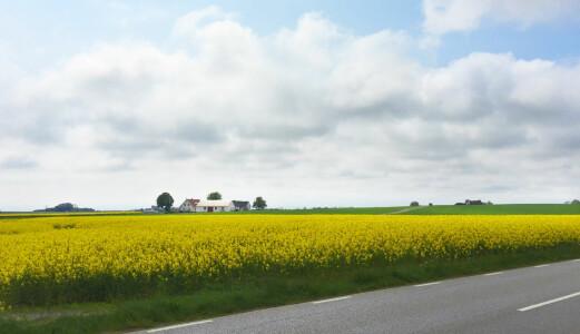 Hva skal du med Provence når du har Skåne?