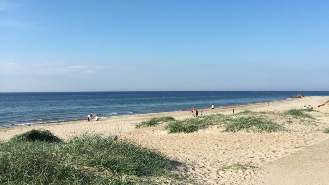 SYDEN I SVERIGE: Myke sandstrender og et bølgende landskap gjør at Skåne nesten blir som et Toscana i nord. Foto: Lina Schøyen