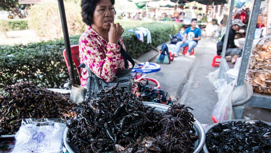 VEIMAT: På et av stoppene langs veien i Kambodsja byr markedet på alt du måtte ønske av snacks – som skorpioner, edderkopper, biller, kakerlakker og andre proteinrike delikatesser.
