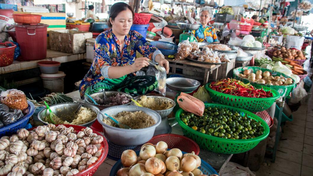 KOLONIAL.VN: Matmarkedet i Se Bac og vietnamesiske byer er definitivt ikke som du som kjenner dem hjemmefra, men bør oppleves!