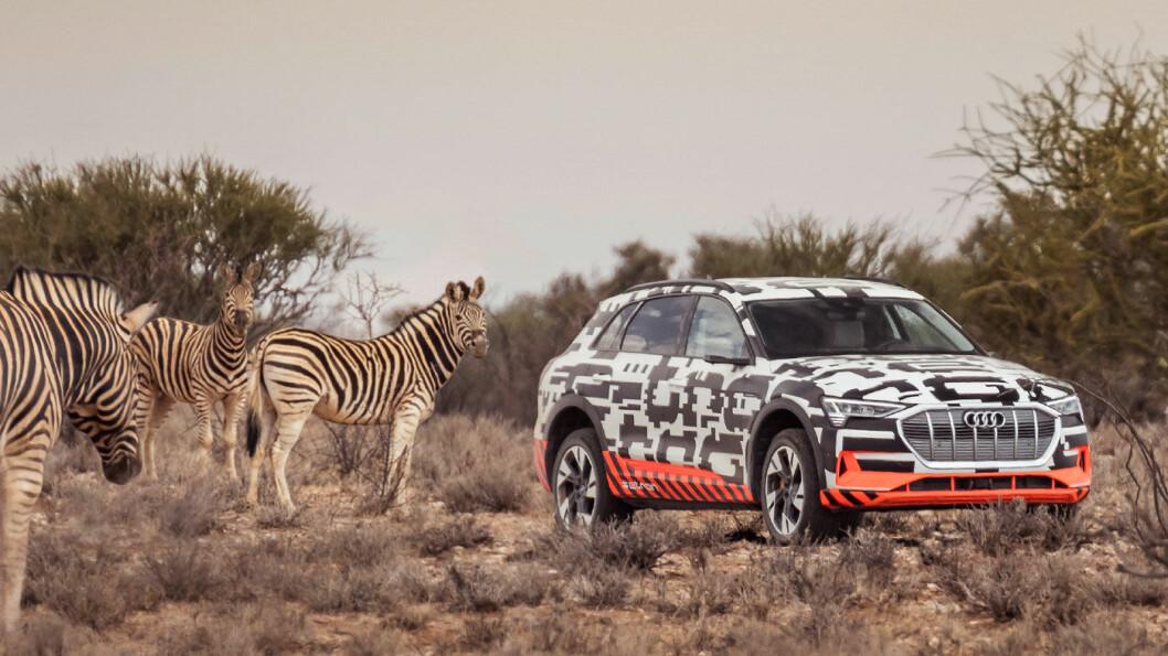 SÅ BRA! Audi e-tron blir bilen å slå i det dyreste elbil-segmentet. Dette er en fabelaktig premium-SUV, både for den som tenker grønt og for den som leter etter bil med kraft. Foto: Tobias Sagmeister/Audi