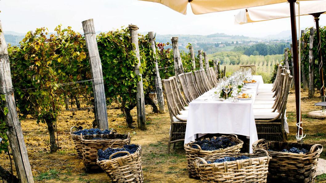 PAUSE I ARBEIDET: Høsten er travel i Piemonte. Da plukkes blant annet druene. Men uten mat og drikke ... Her er det klart for pause på det lille hotellet Villa La Madonna. Foto: Villa la Madonna