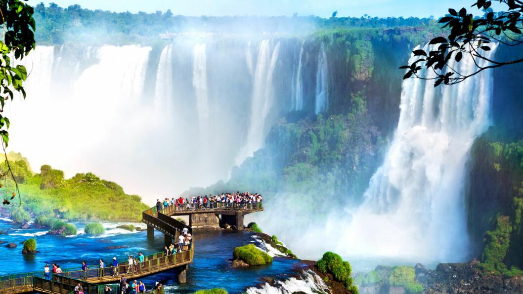 IMPONERENDE: De fantastiske Iguazúfallene ligger på grensen mellom Argentina og Brasil, og nasjonalparkene på begge sider av grensen står på UNESCOs verdensarvliste.