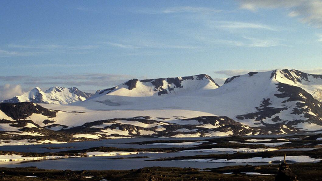 UTSIKT MOT FANARÅKEN: Veien over Sognefjellet er flott, den veksler mellom høyfjell og fjord i løpet av få kilometer. Foto: Per Roger Lauritzen