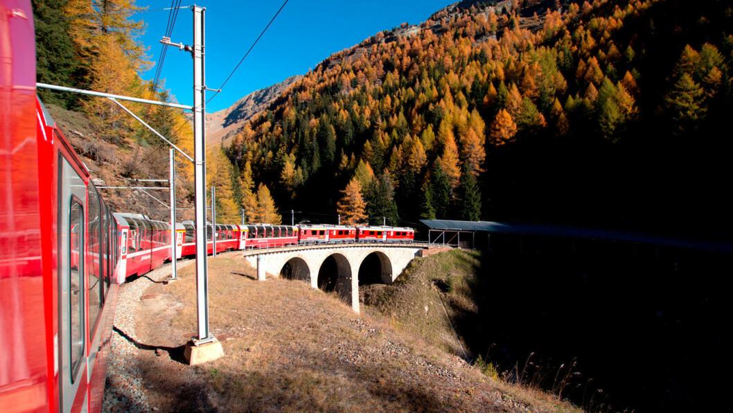 INGENIØRKUNST: Toget krysser 291 broer og kjører gjennom 91 tunneler på turen til Zermatt. Foto: Peter Raaum