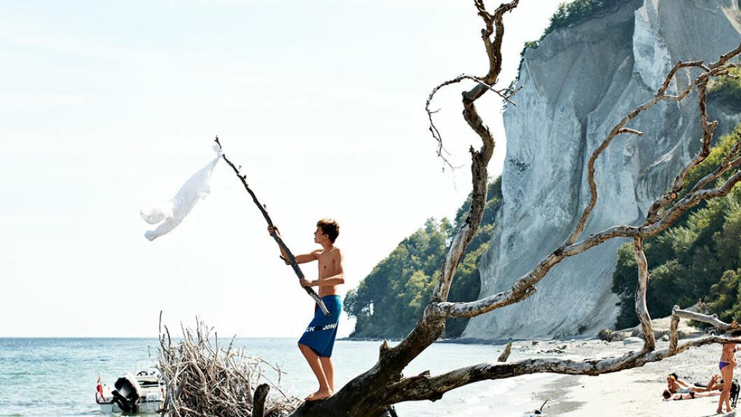 EKSOTISK: Møns klint er en bratt kalksteinsklippe med en flott strand. Foto: Niclas Jessen/Visit Denmark