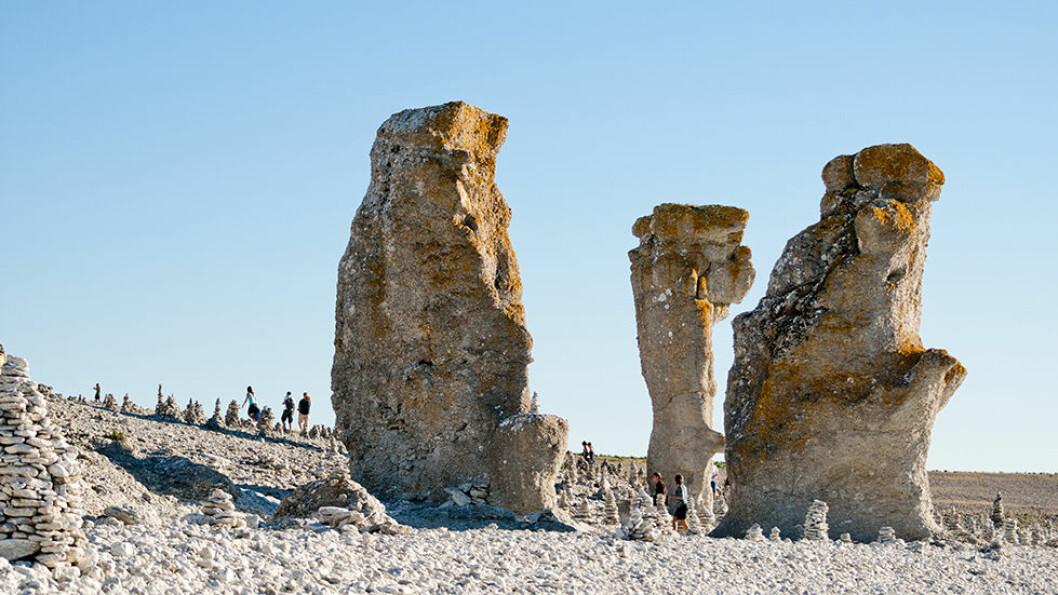 TYPISK GOTLAND: Raukene, de høye kalksteinsformasjonene er helt spesielle. Foto: Helena Wahlman/Visit Sweden