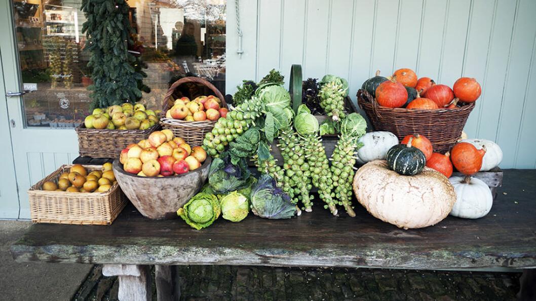 DAYLESFORD ORGANIC: Dette er gårdsbutikken sin det! Mye produseres på gården, alt er økologisk.