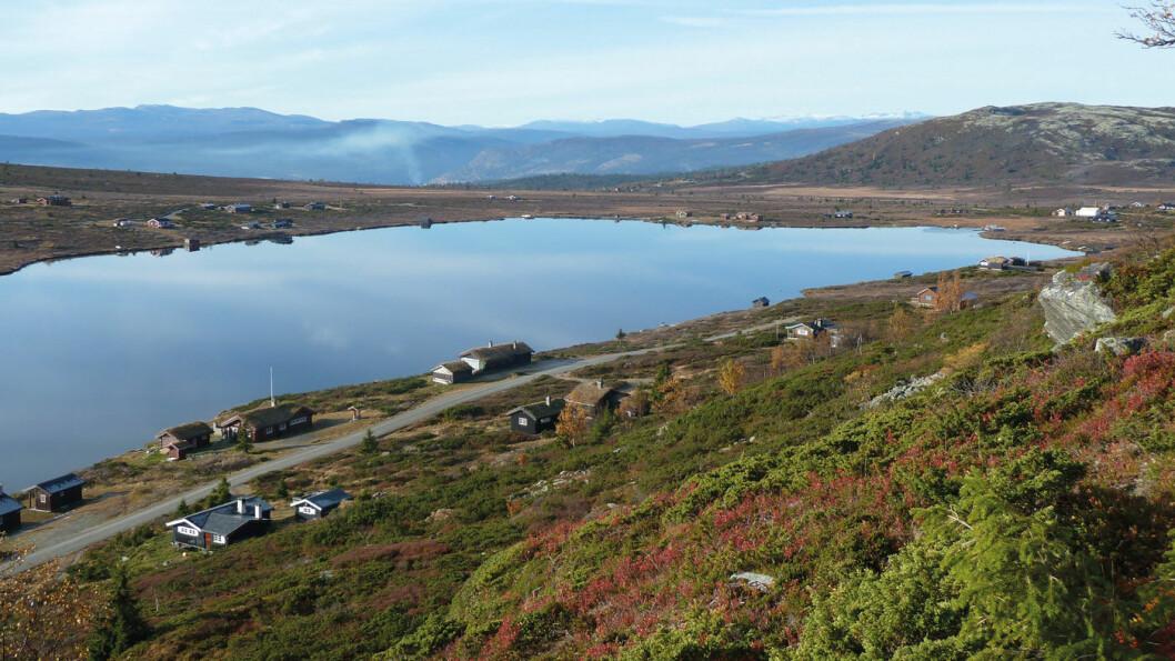 FAGRE FJELL: Utsikt over Avstjønna, Gudbrandsdalen og mot Jotunheimen i vest. Foto: Reidar Stangenes