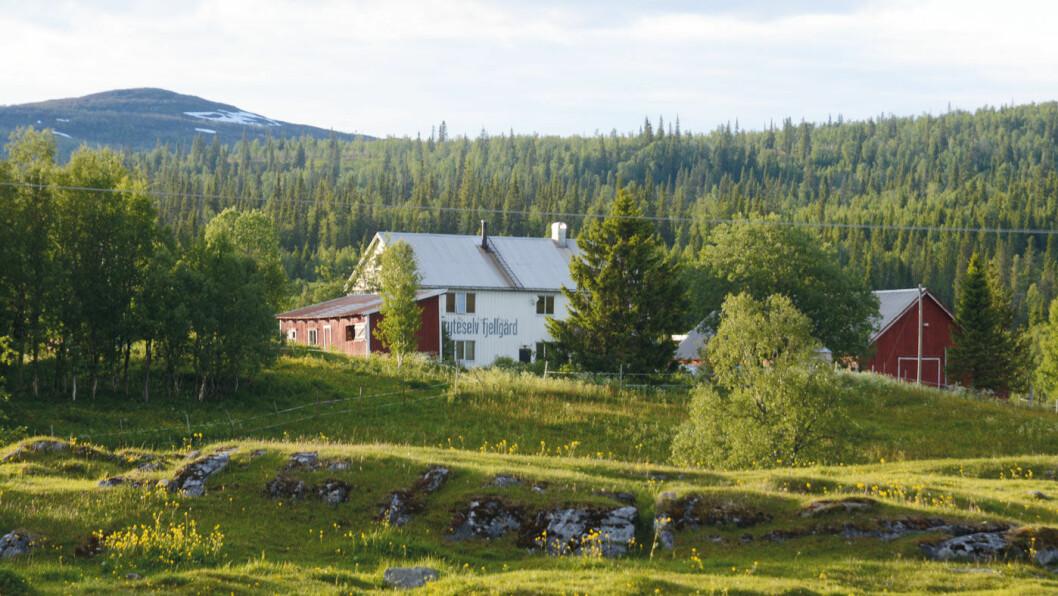 SJARM: Den koselige Gryteselv fjellgård ligger langs RV73. Foto: Per Roger Lauritzen