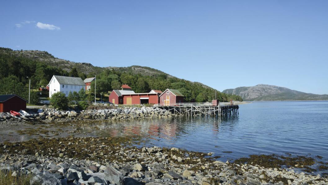 YTRE NAMDAL: Via Hofles fergekai i Nærøy kommune, kommer du ut til de ytre delene av Namdalskysten. Foto: Per Roger Lauritzen