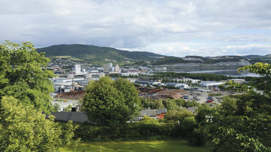 SKOGEN: Trelastlagrene i Steinkjer forteller sitt om at skogbruk er viktig for det gamle Nord-Trøndelags hovedstad. Foto: Per Roger Lauritzen