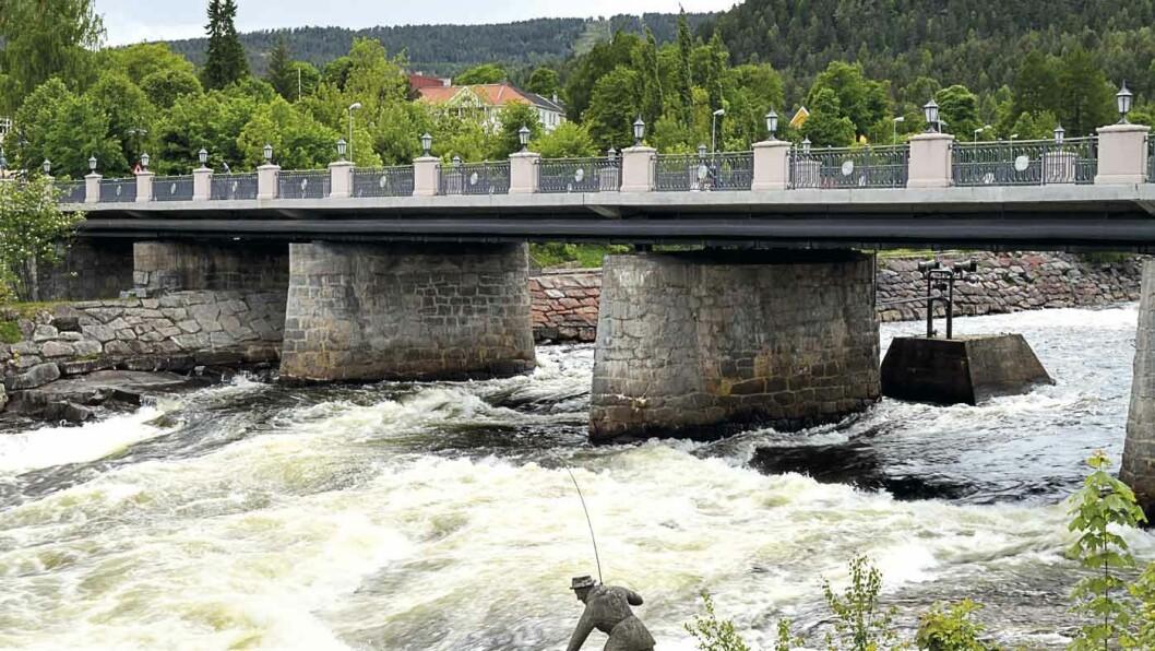 LÅGEN: Midt i Kongsberg danner Numedalslågen praktfulle stryk. Foto: Wikimedia