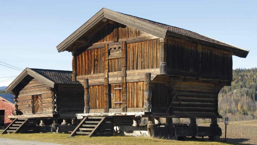 ALSTAD GÅRD: Det eldste Alstadloftet i Rollag er fra 1193. Foto: Per Roger Lauritzen