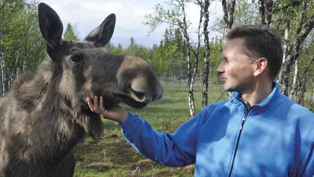 FJELLGÅRD OG LEIRSKOLE: På Langedrag er det mulig å få nærkontakt med nesten 30 ulike dyreslag.