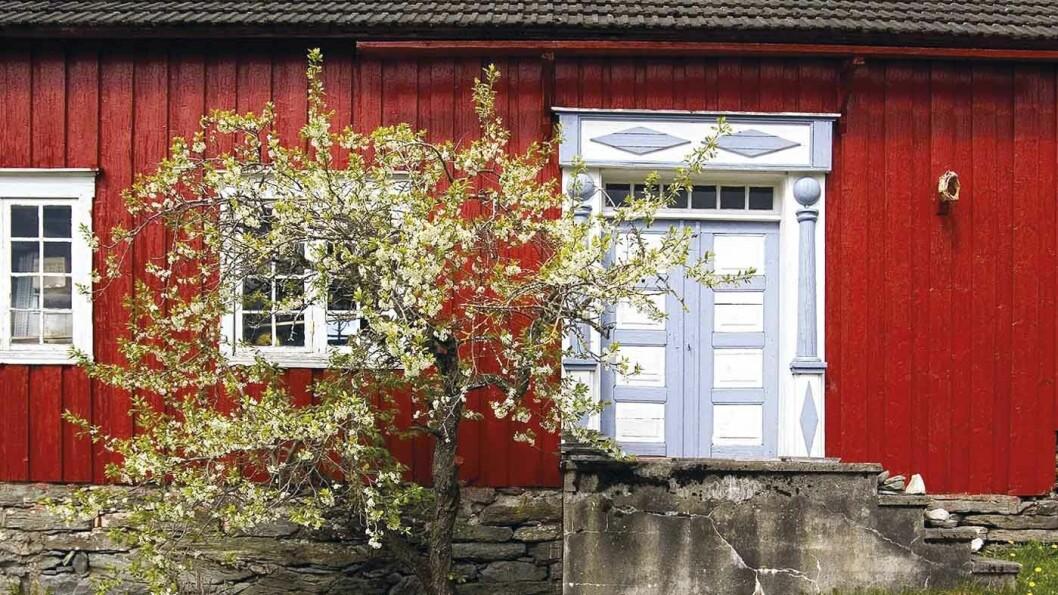 GÅRDSMAT: På Gangstad Gårdsysteri får blant annet kjøpt ost og iskrem av gårdens ferske kumelk.