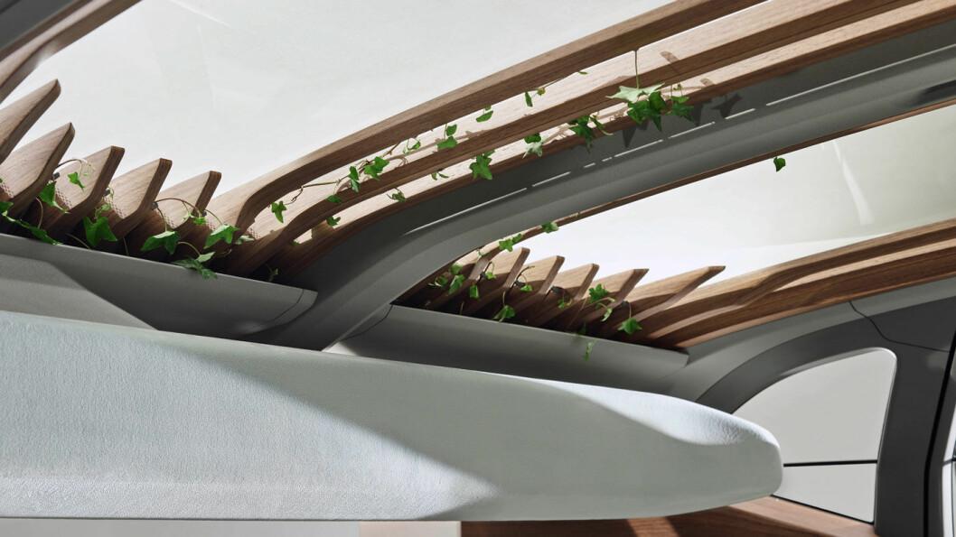 HUSKET Å LUKE BLOMSTERBEDET? Plantene i taket gir helt nye assosiasjoner til det som en gang var «takluke».