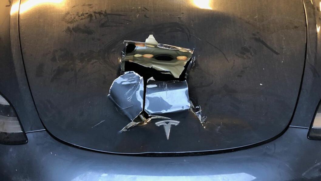 HUGGET OPP: Med ca. 10 velrettede øksehugg klarte Tesla-eieren å komme seg ned til oppbevaringsrommet, og få fjernet skalldyrene. Foto: Privat