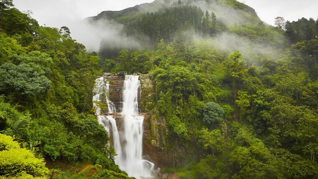 FRITT FALL: Sri Lanka er en tropisk øy, men i nesten 2000 meters høyde er det kjøligere, og store fosser buldrer nedover fjellsidene.