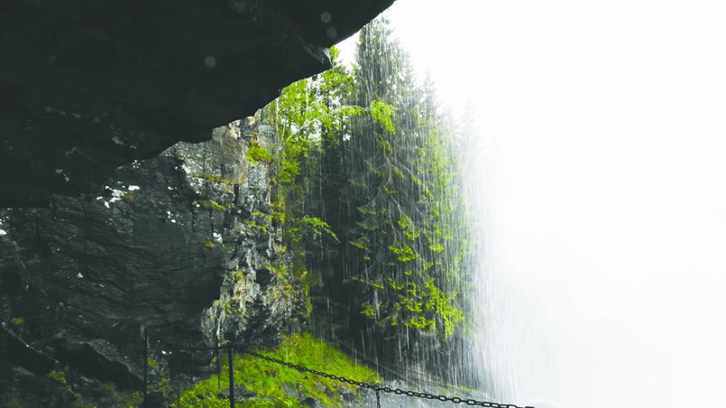 FOR MANN OG KU: Både dyr og mennesker kan vandre helt inn under Tvinnefossen. Foto: Per Roger Lauritzen