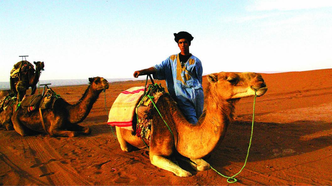 ØRKENFOLKET: De som har lyst, kan ri på dromedarer og oppleve solnedgangen over Sahara. Foto: Escape
