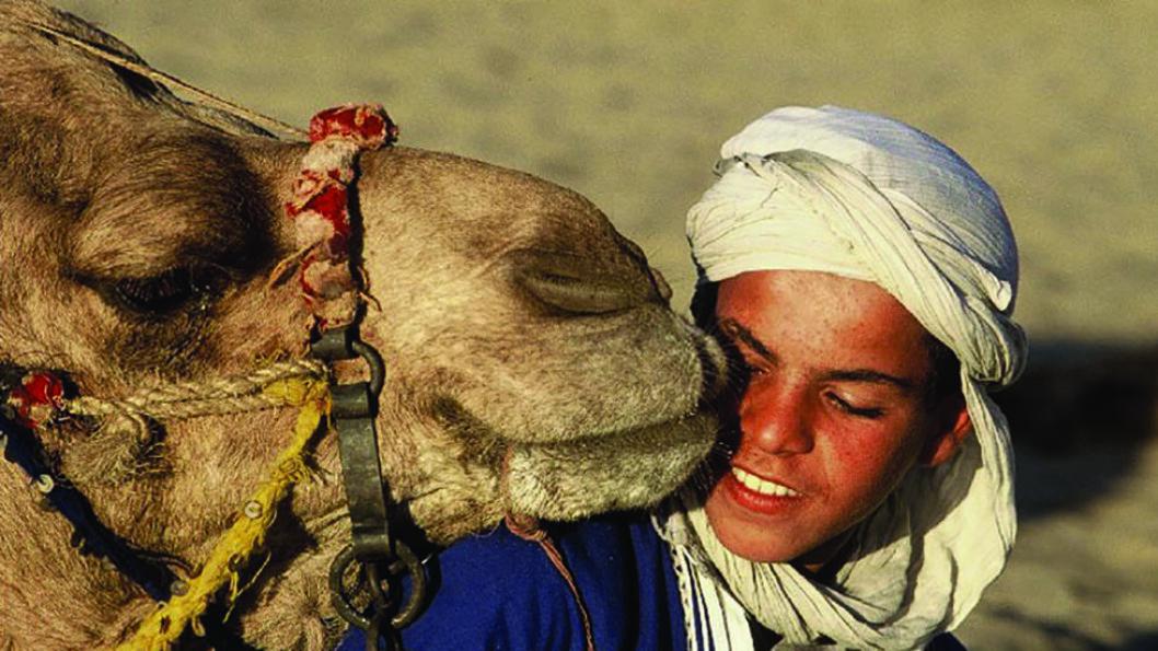 EN UTROLIG OPPLEVELSE: Ute i ørkenen tar beduinene i mot oss. Her skal vi overnatte i telt slik de har gjort i uminnelige tider. Det er enkelt, men likevel komfortabelt.