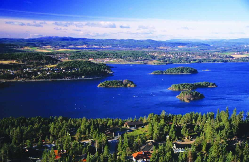 487 METER OVER HAVET: Kongens utsikt ligger en halvtimes fottur fra Kleivstua.
