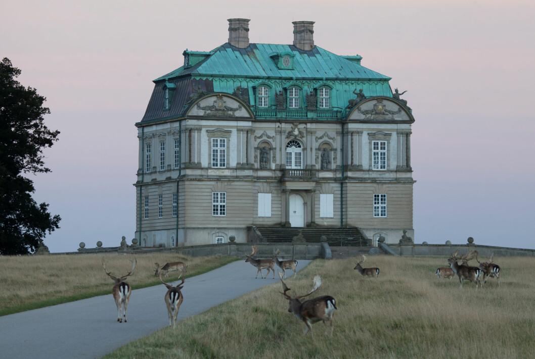 STASELIG: Eremitageslottet ligger flott til nord for Hellerup, midt mellom København sentrum og Louisiana kunstmuseum. Foto: Kim Wyon