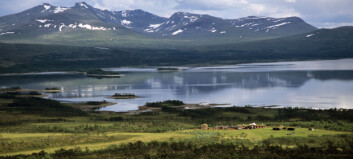 Svensk-norsk panorama