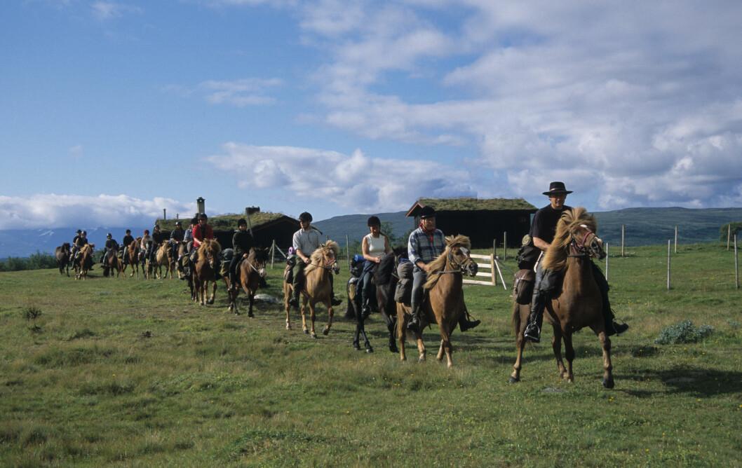 HYPP-HYPP: Det arrangeres populære rideturer i Sylan hver sommer. Foto: Per Roger Lauritzen