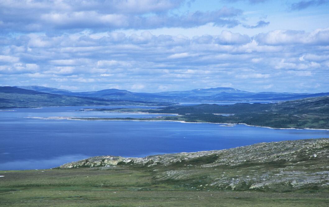 FLOTT SKUE: Fra veien inn til Nedalshytta ser du Nesjøen og Esandsjøen. Foto: Per Roger Lauritzen