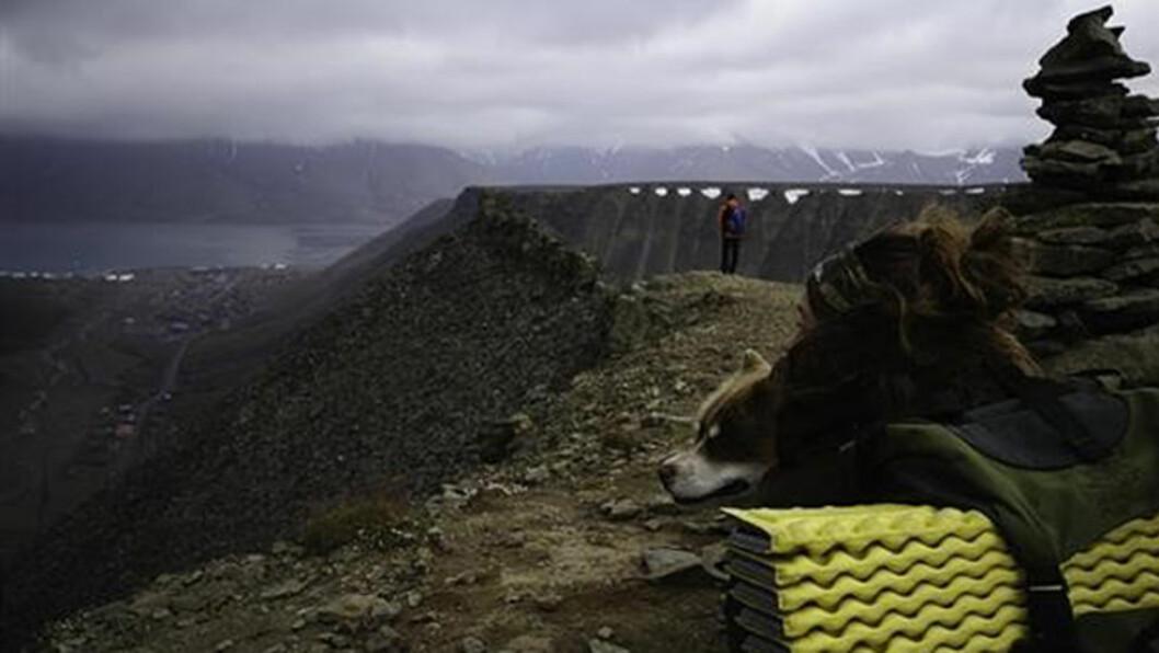 Landskapet og Sarkofagen er formet av isbreene gjennom tusener av år.
