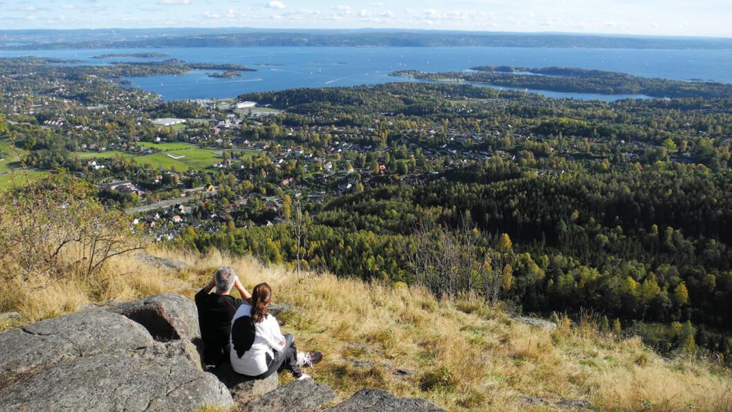 UTSYN: Skaugumsåsen er sannsynligvis Askers mest populære utsiktspunkt – med god grunn. Foto: Per Roger Lauritzen