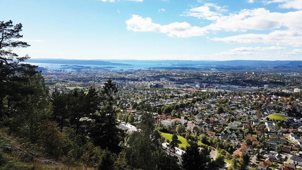 HOVEDSTAD: Utsiktspunktene over Oslo er mange. Her er byen sett fra Grefsenkollen. Foto: Eivind Skar