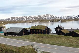 Nå kan du hurtiglade bilen på Norges beste veikro