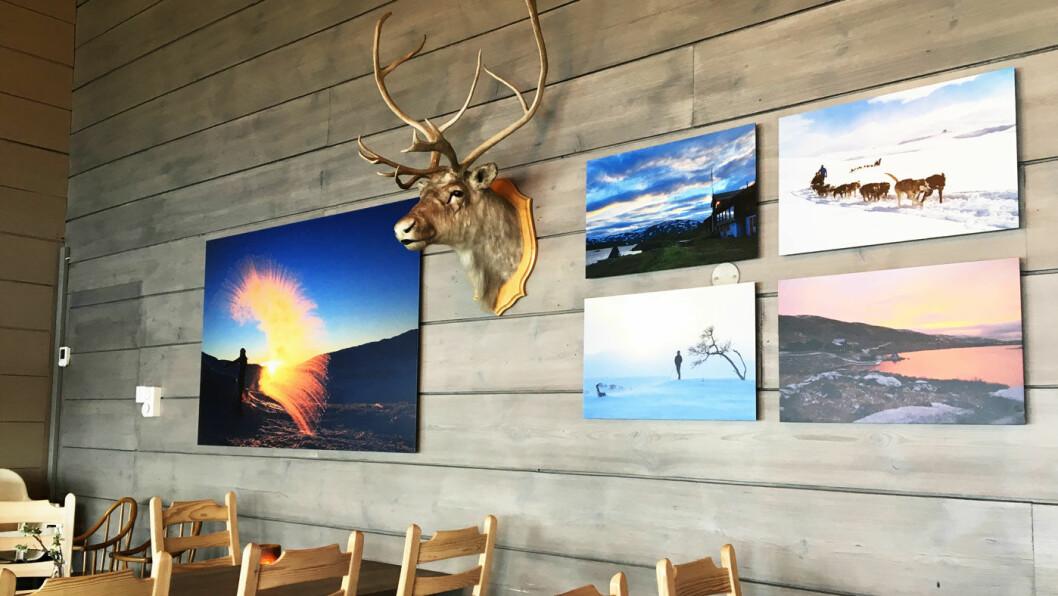 SPISESTUA: Spisesalen er nyoppusset med flotte naturbilder på veggen.