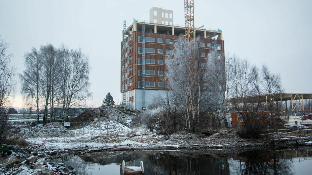 STREKKER SEG: Mjøstårnet med hotellet The Wood skal stå ferdig i mars 2019. Foto: Peter Raaum