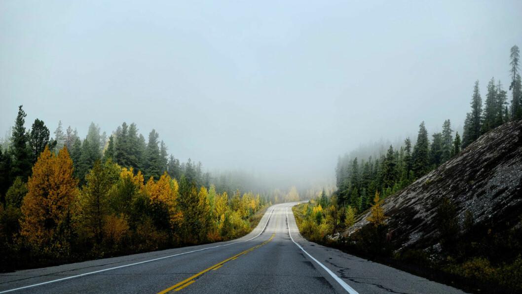 URETTFERDIG AVGIFT: Drivstoffavgiften rammer i bunn og grunn dem som virkelig er avhengige av bilen, nemlig distrikts-Norge, mener NAF. Foto: Tim Gouw, Unsplash