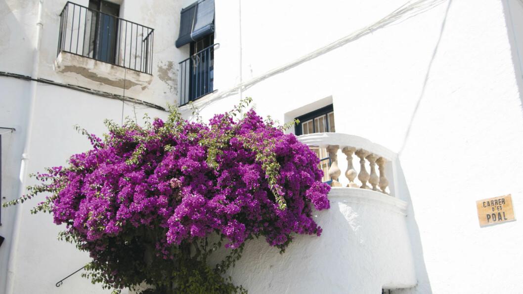 HVITE BYER: Hvitkalkede hus og trange bygater i de tidligere fiskerlandsbyene langs den nordøstlige kysten av Spania.