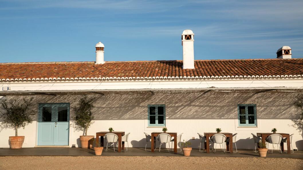 BO PÅ EN VINGÅRD: Malhadinha Nova i Albernoa, 145 km nord for sørkysten av Portugal, er en staselig, gammel vingård som også er hotell med SPA. Foto: Mette Randem