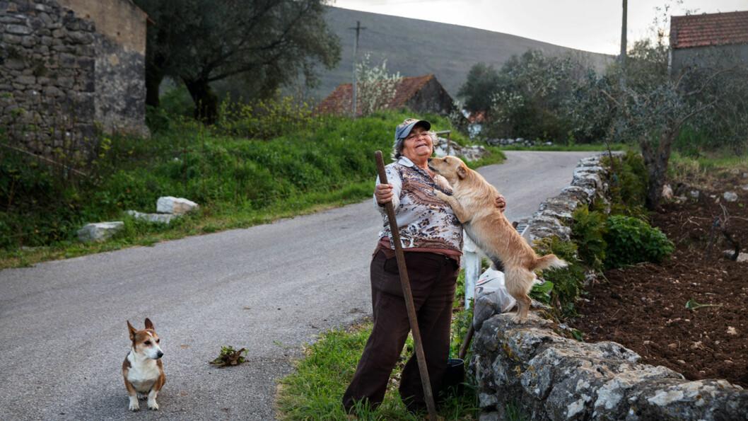 HYGGELIGE FOLK: Damen med hundene møtte vi i Alvados i nasjonalparken Serras de Aire e Candeeiros. Foto: Mette Randem