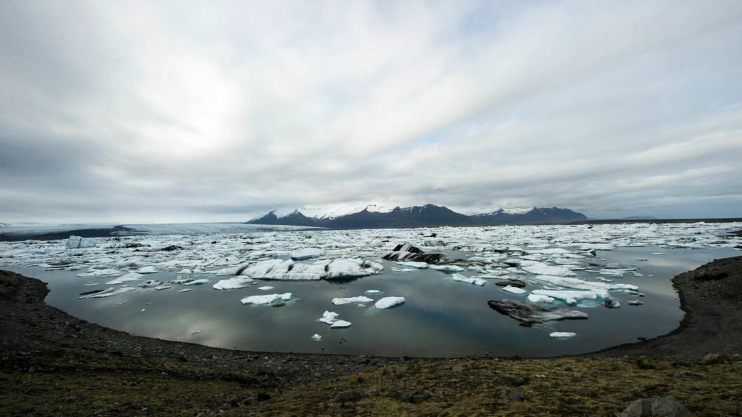ISKALDT: Jökulsárlón er et av Islands mest spektakulære syn, og du kan reise med båt blant de mange isflakene i lagunen, som ligger godt merket rett ved ringveien.