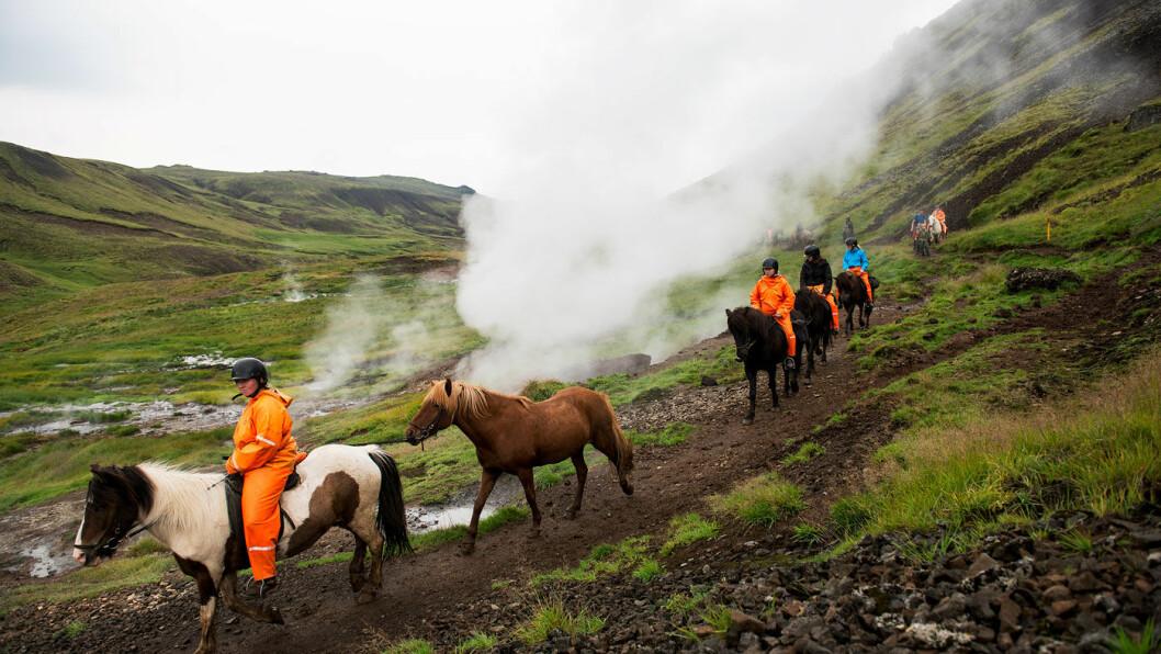 DET ER KLART DU MÅ RI: Når du er på Island kan du ri innover i fjellene.