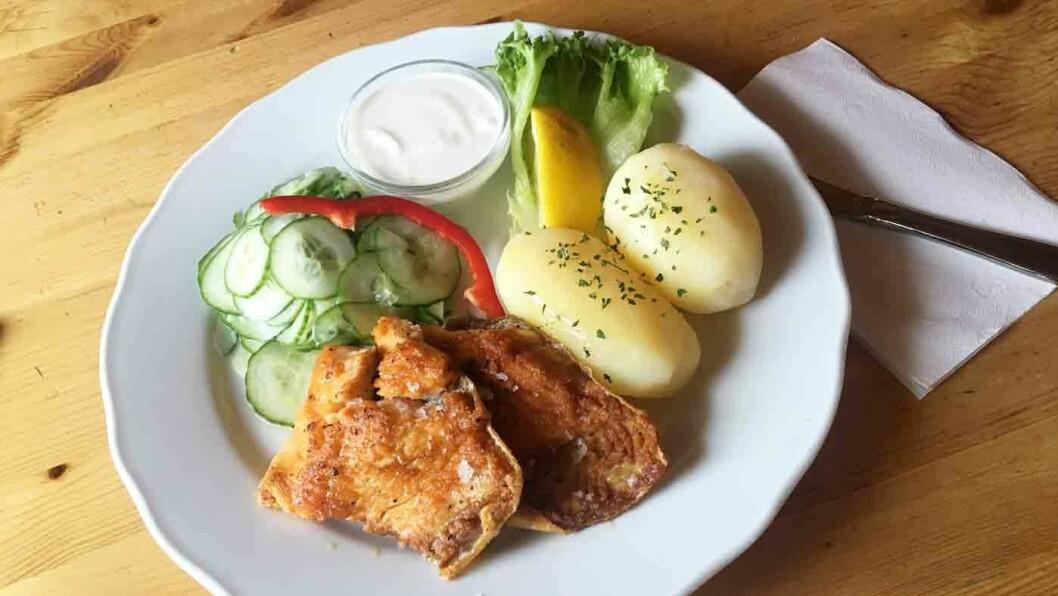 LOKAL FISK: Varm, nystekt - og litt tørrstekt, røyr med poteter og agurksalat.