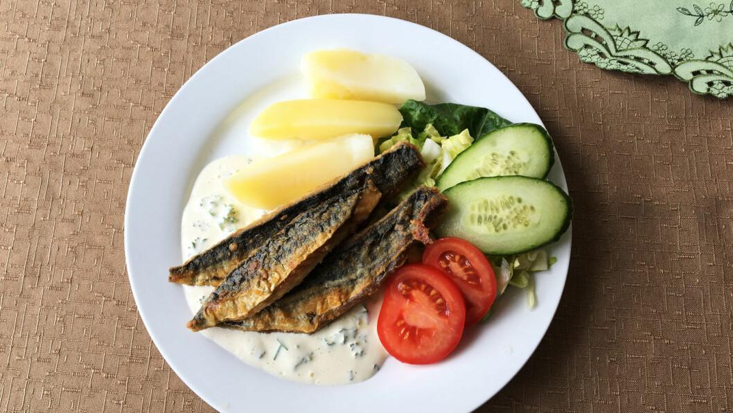 SOMMERMAT: Fersk, nystekt makrell og jordbær til dessert.