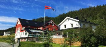 Leken diner i Trøndelag