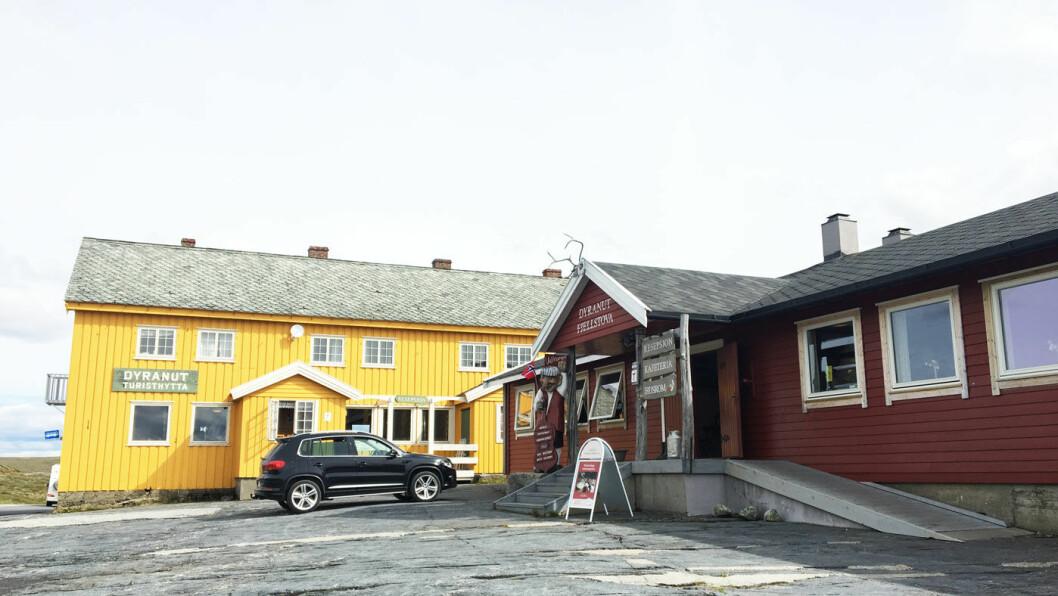 VED VEIENS HØYESTE PUNKT: Dyranut Fjellstova ligger ved RV7 på Hardangervidda.