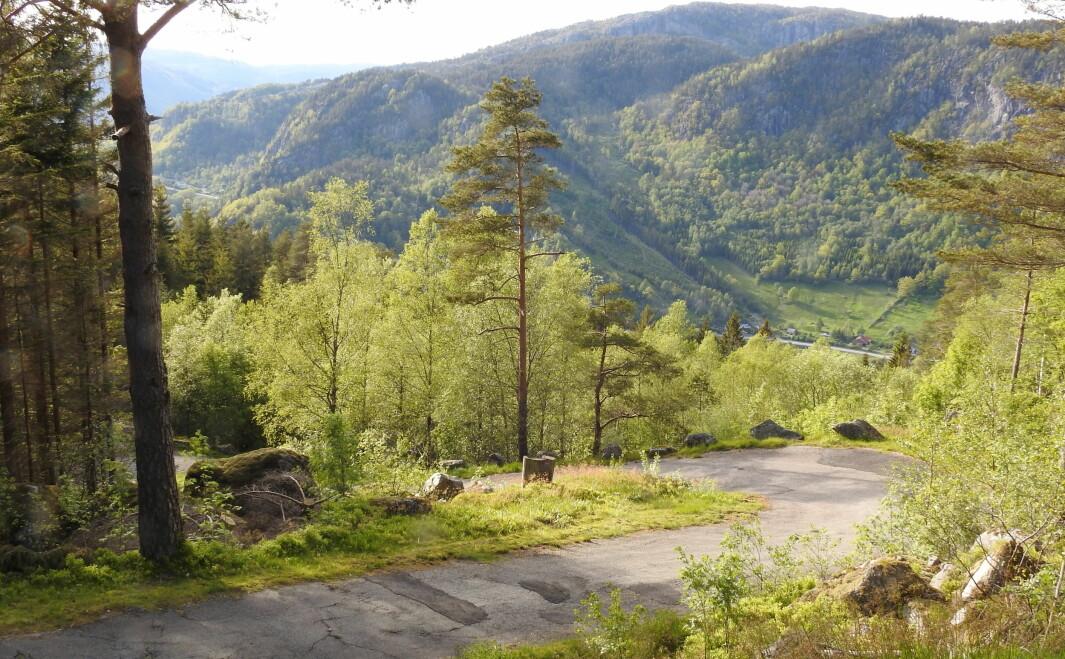 UTEN LIKE: Veien over Tronåsen går fra rasteplassen ved Tronvik til Bakke bro og Sirnesvegen, langs elven Sira i nabokommunen. Maken til bratt og svingete vei skal du lete lenge etter.