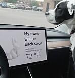 Så fort blir bilen farlig varm i sommersola