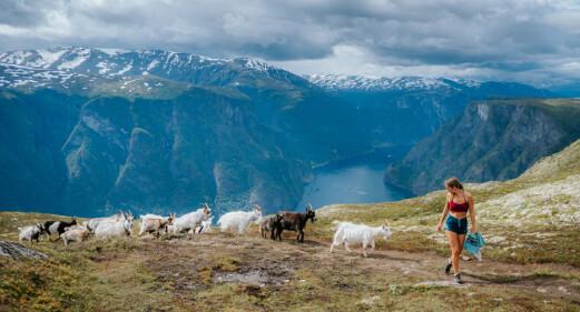 De beste reisetipsene fra Norges-ekspertene